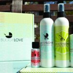 BuggyLOVE – Organic Stroller Cleaning Kit giveaway